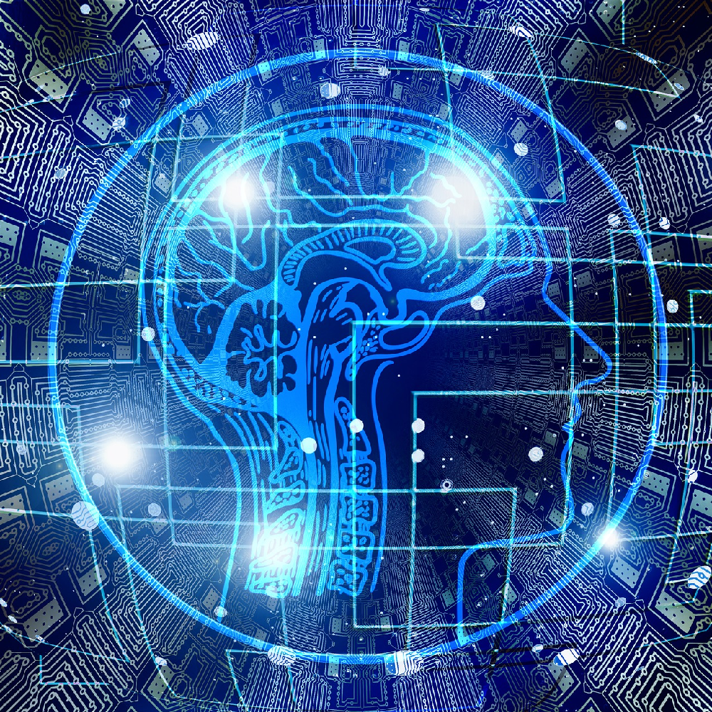 Brain Changing Information