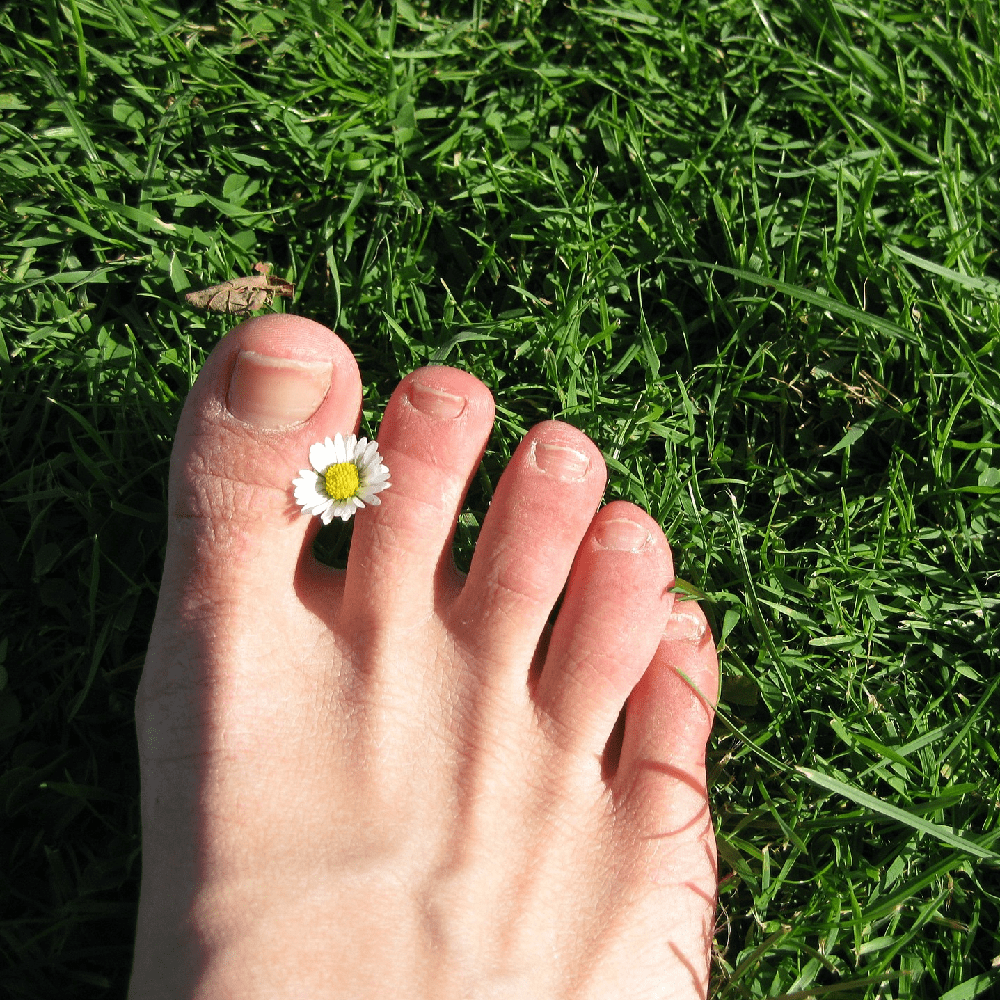 Why Do Your Toenails Fall Off During Long Distance Running?