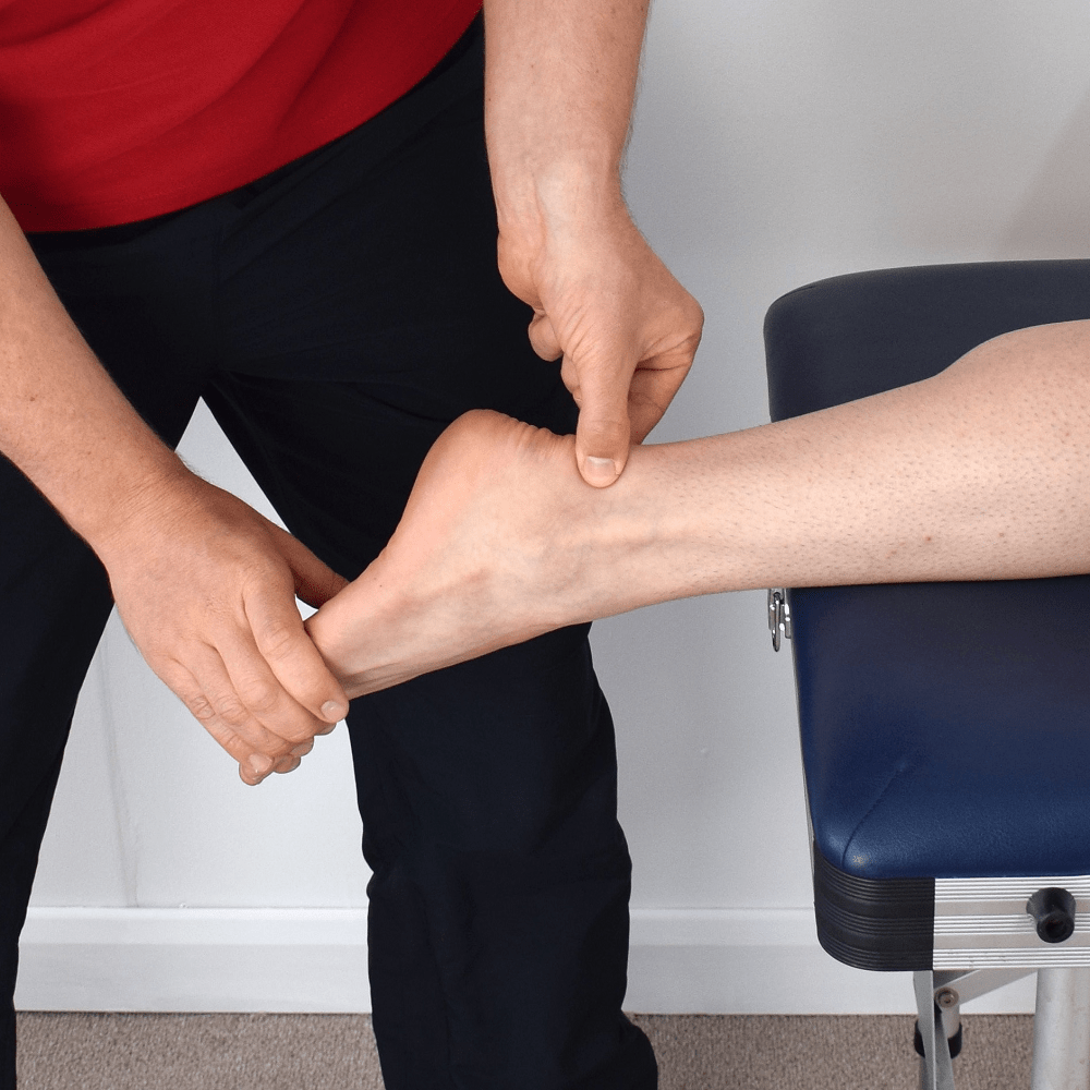Ligaments And Tendons – How Are They Different?